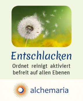 alchemaria Set-Angebot 10 ml